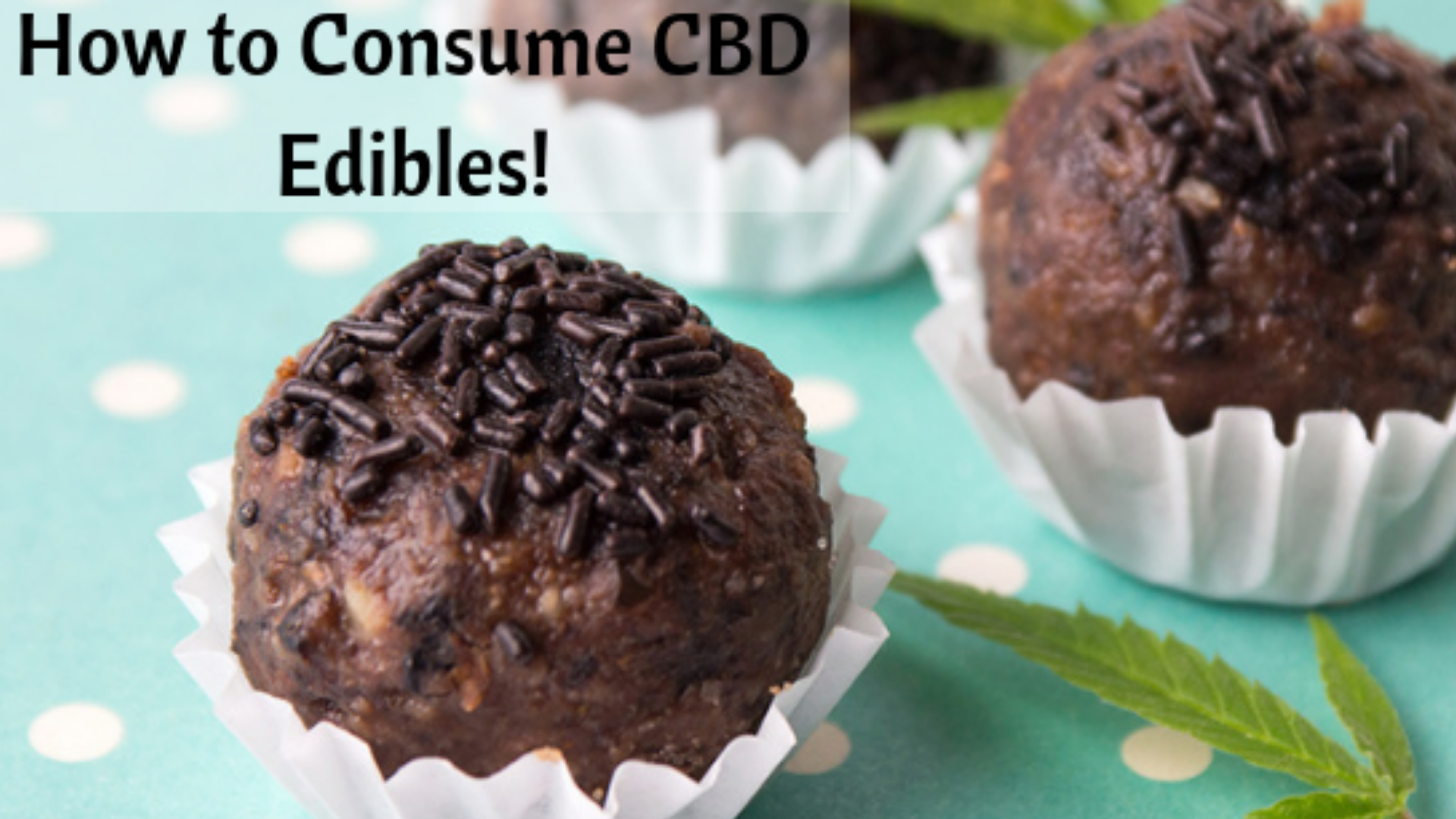 Best-CBD-Edible-CBDLOT.png